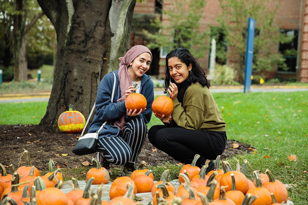 Two women sitting in front of many pumpkins