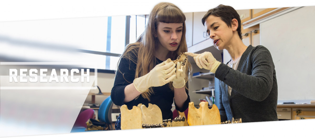 Research; student and professor looking at bones in the lab